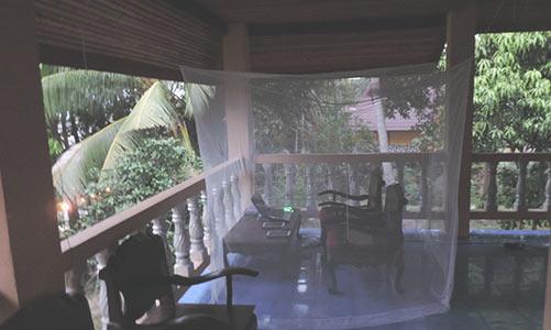 Thailand_Fliegennetz
